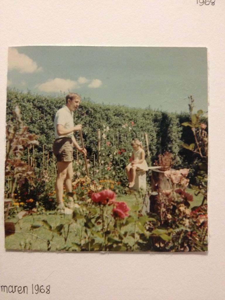 Min pappa i trädgården